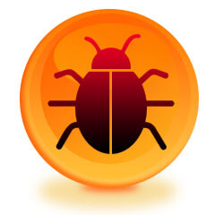 Bug Sweep In Your Home in Harrogate